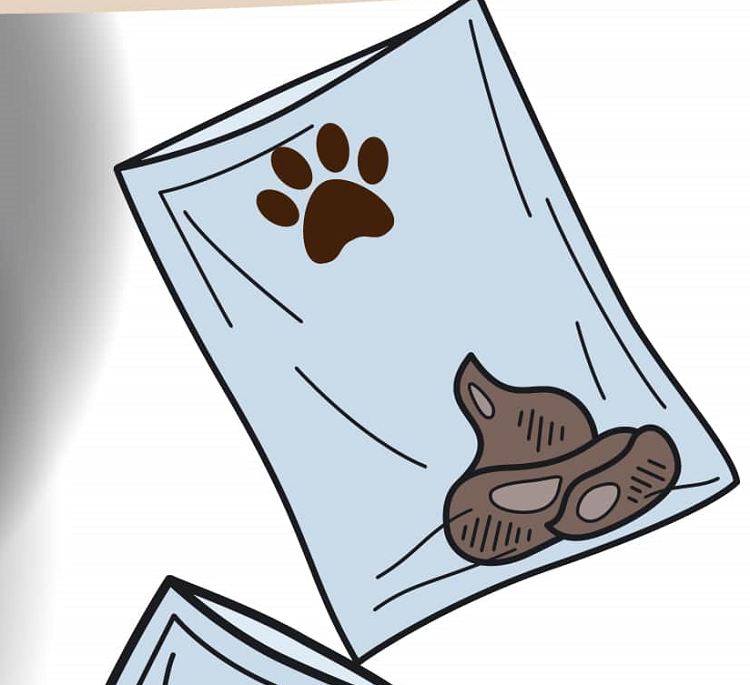 Importance of Cleaning your Dogs Poop